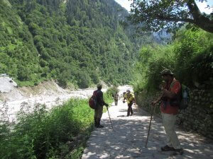 Utttarakhand Trip Trek:  en-route-of-ghangaria-valley-of-flower-trek-uttarakhand