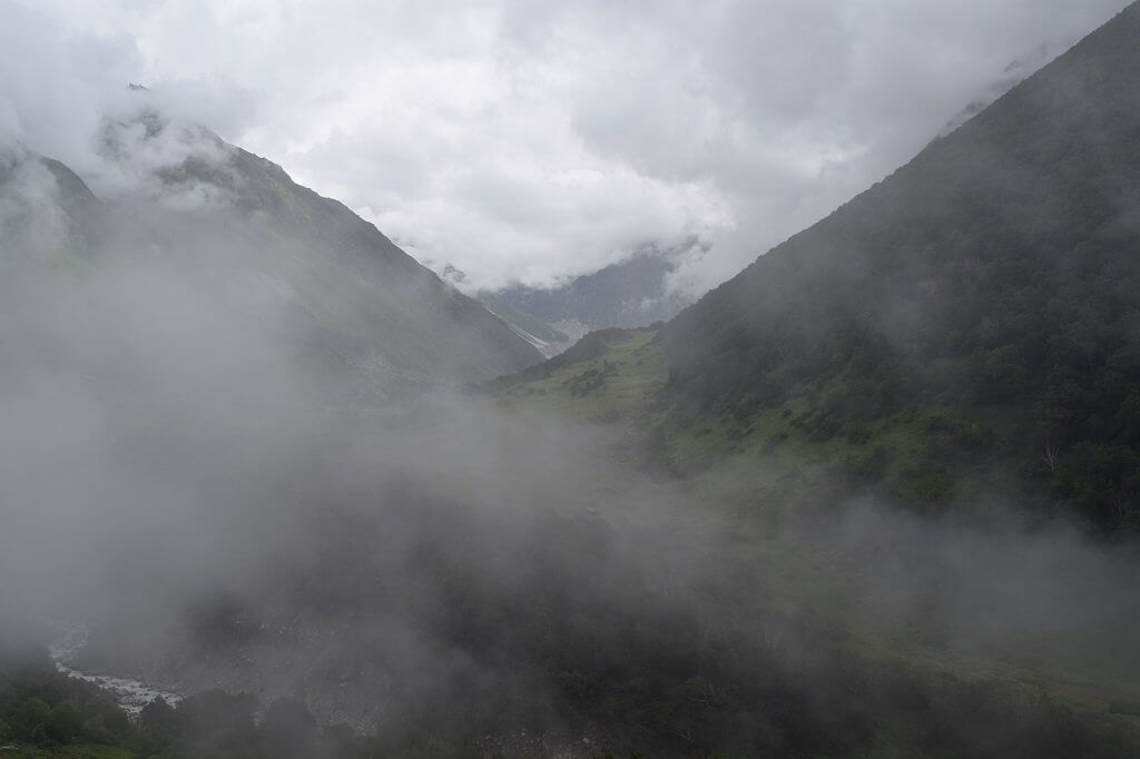 cloudy view of valley of flowers national park