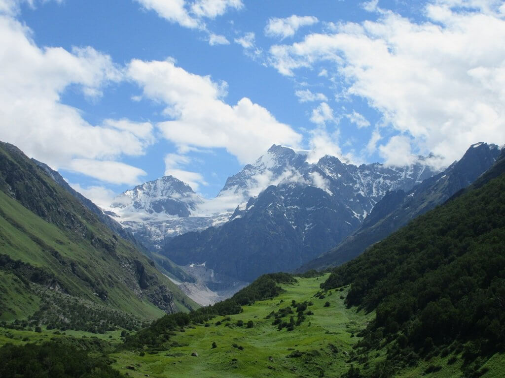 view of valley of flower , uttarakhand