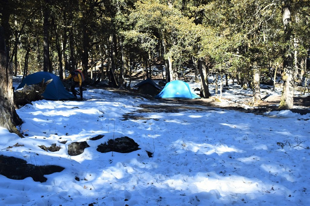 camp site on kuari pass trek