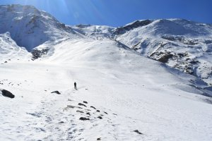 Utttarakhand Trip Trek:  snow coverd mountains on kuari pass trek