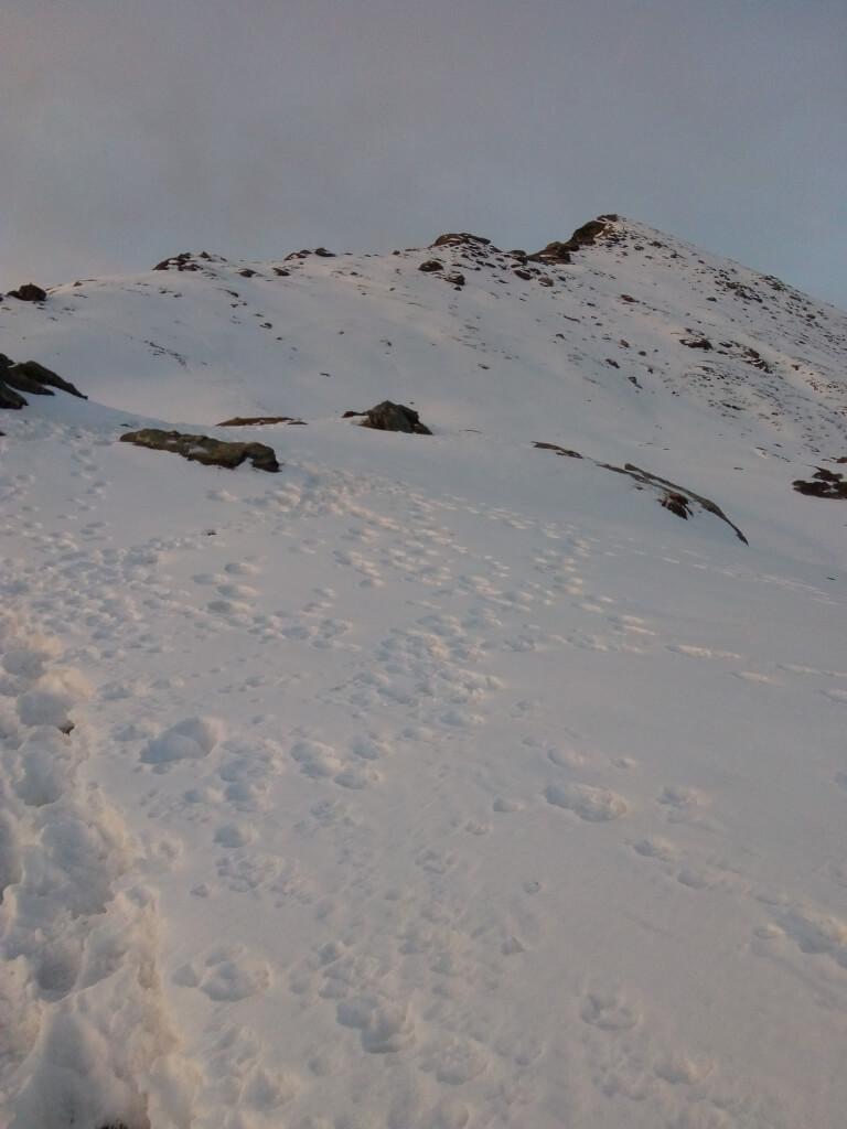 View of kedarkantha summit