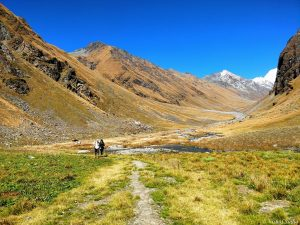 Utttarakhand Trip Trek:  borashu pass Trek