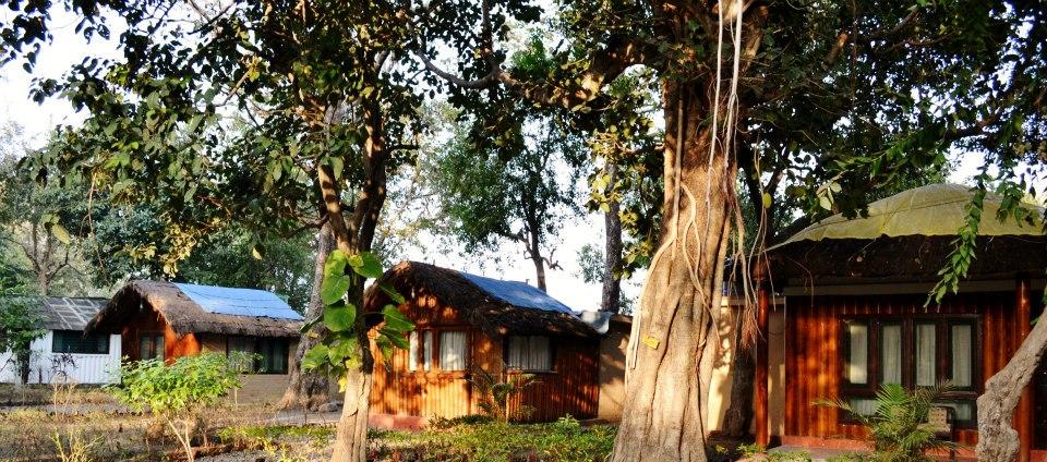 Jungle lore camp, Jim Corbett