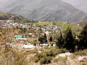 Utttarakhand Trip Trek:  Sari village, Chopta (Uttarakhand )